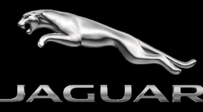 Rettungskarte Jaguar